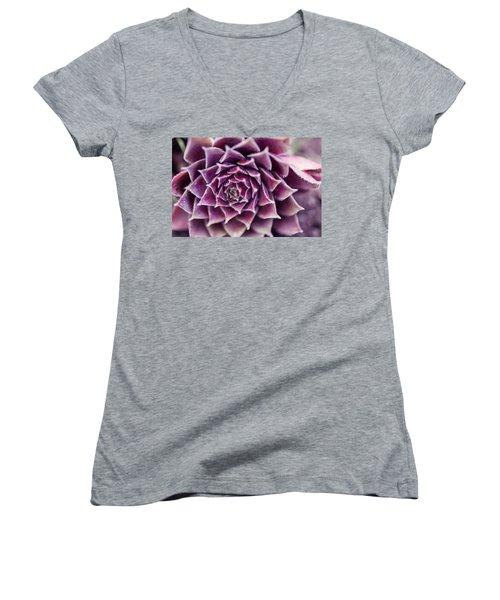 Purple Succulent Plant Blossom In Summer Women's V-Neck T-Shirt (Junior Cut) by Jingjits Photography