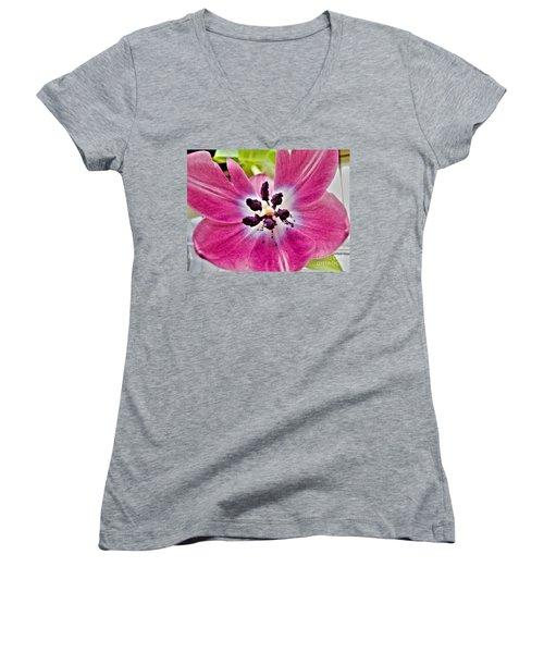 Women's V-Neck T-Shirt (Junior Cut) featuring the photograph Purple Tulip by Nina Ficur Feenan