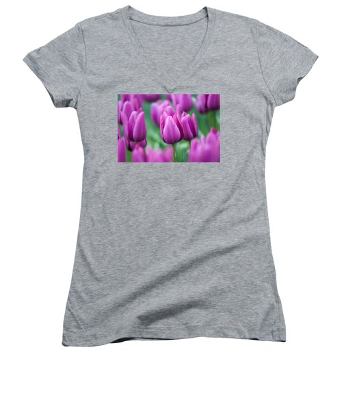 Purple Tulips Of Keukenhof Women's V-Neck