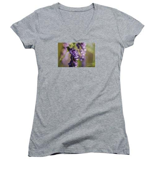 Purple Wildflowers Women's V-Neck T-Shirt (Junior Cut) by JT Lewis