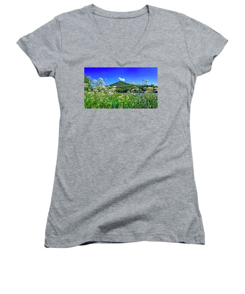Queen Anne's Lace, Peaks Of Otter  Women's V-Neck