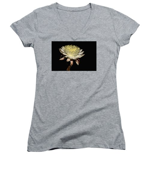Queen Of The Night Women's V-Neck T-Shirt