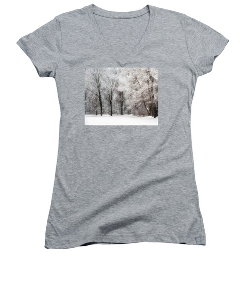 Quiet Winter  Women's V-Neck