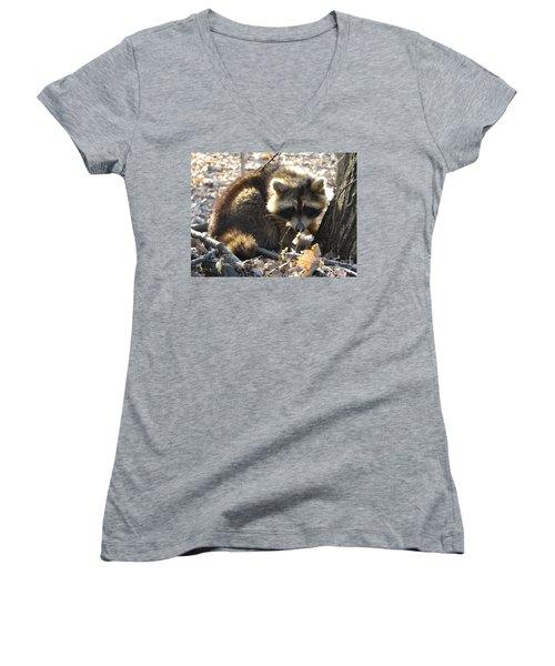 Raccoon Women's V-Neck T-Shirt