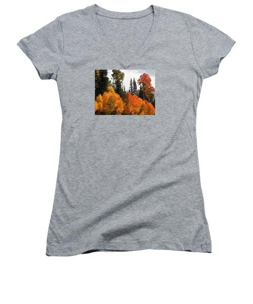 Radiant Autumnal Forest Women's V-Neck T-Shirt (Junior Cut) by Deborah Moen