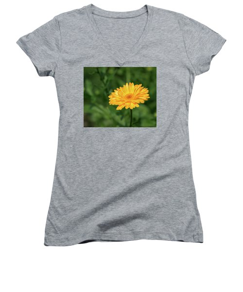 Radiant Summer Flower Soaking It Up Women's V-Neck