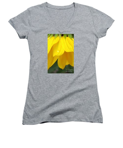 Rain And Sunshine On A Colorado Wildflower Women's V-Neck (Athletic Fit)