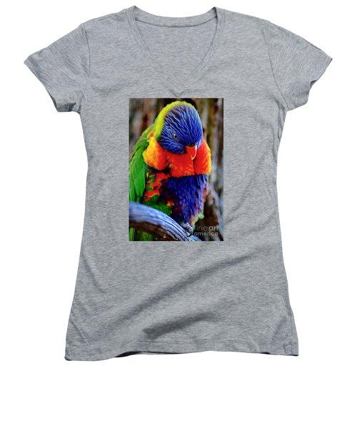 Rainbow Women's V-Neck T-Shirt (Junior Cut) by Adam Olsen