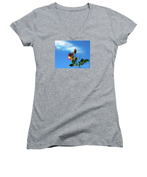Rainbow Cloud And Sunlit Roses Women's V-Neck T-Shirt (Junior Cut) by CML Brown