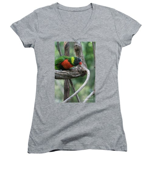 Rainbow Lorikeet #2 Women's V-Neck T-Shirt