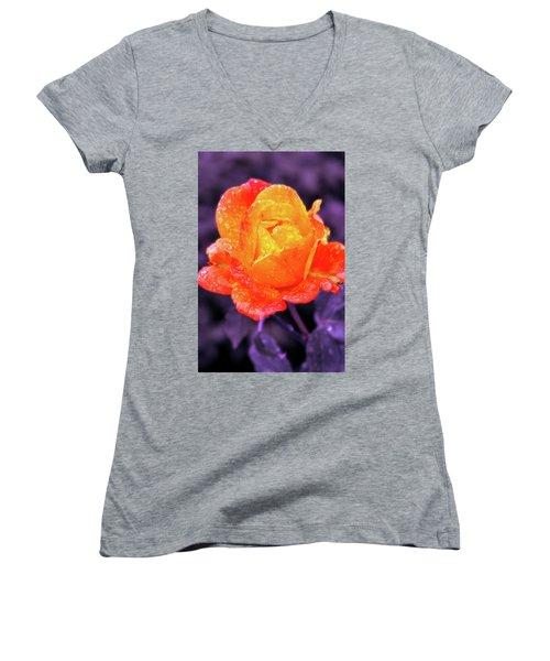 Raindrops On Roses Women's V-Neck