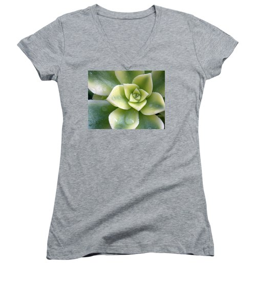 Women's V-Neck T-Shirt (Junior Cut) featuring the photograph Raindrops On The Succulent by Elvira Butler