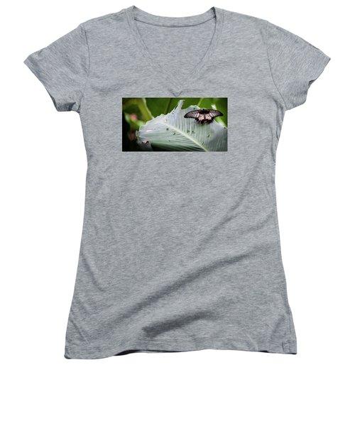 Raining Wings Women's V-Neck T-Shirt (Junior Cut) by Karen Wiles