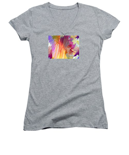 Rainshower Women's V-Neck T-Shirt (Junior Cut) by Alika Kumar