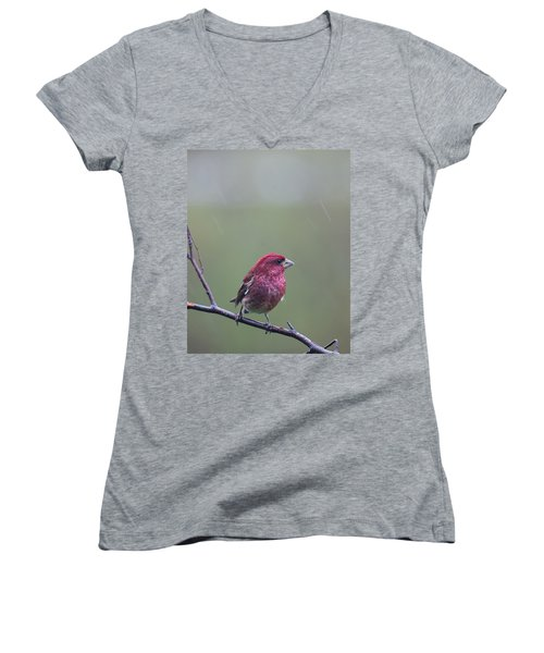 Women's V-Neck T-Shirt (Junior Cut) featuring the photograph Rainy Day Finch by Susan Capuano