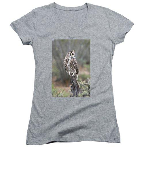 Rainy Day Owl Women's V-Neck T-Shirt