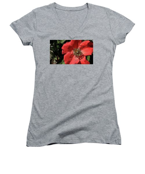 Rambling Rose Women's V-Neck T-Shirt (Junior Cut) by Donna G Smith