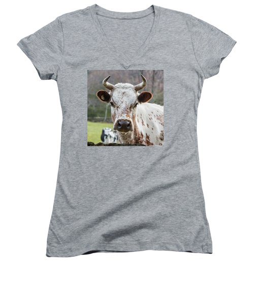 Women's V-Neck T-Shirt (Junior Cut) featuring the photograph Randall Cow by Bill Wakeley