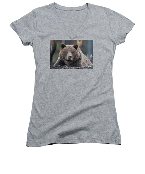 Raw, Rugged And Wild- Grizzly Women's V-Neck