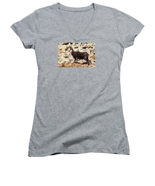 Women's V-Neck T-Shirt (Junior Cut) featuring the photograph Ready For The Challenge by Richard Patmore