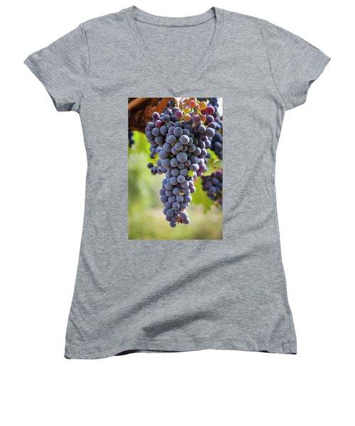Ready For The Crush Women's V-Neck T-Shirt