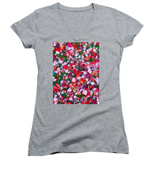 Red And Green Leaves Women's V-Neck