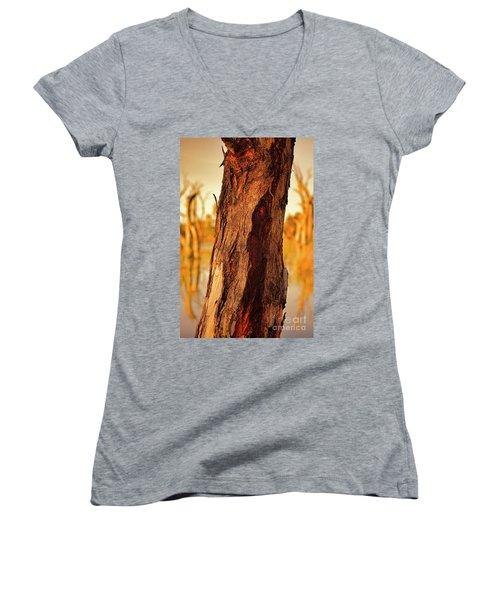 Red Bark Women's V-Neck T-Shirt (Junior Cut) by Douglas Barnard