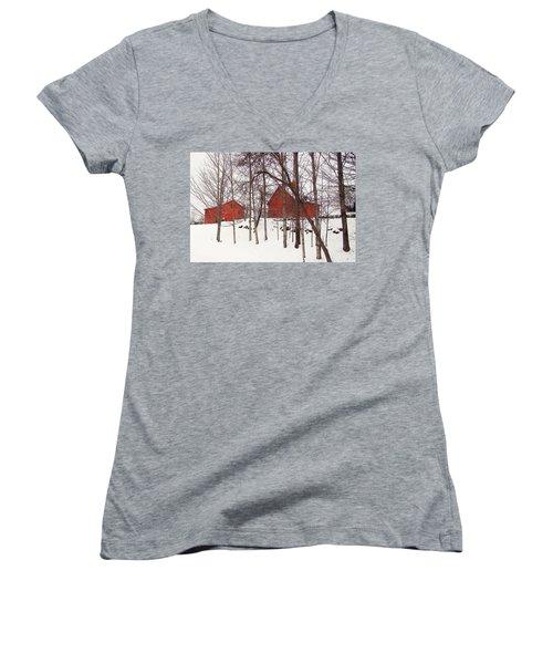 Red Barns Women's V-Neck T-Shirt (Junior Cut) by Betsy Zimmerli