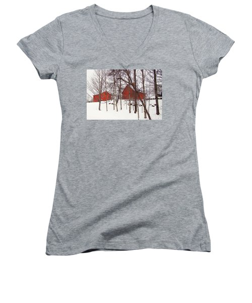 Red Barns Women's V-Neck (Athletic Fit)