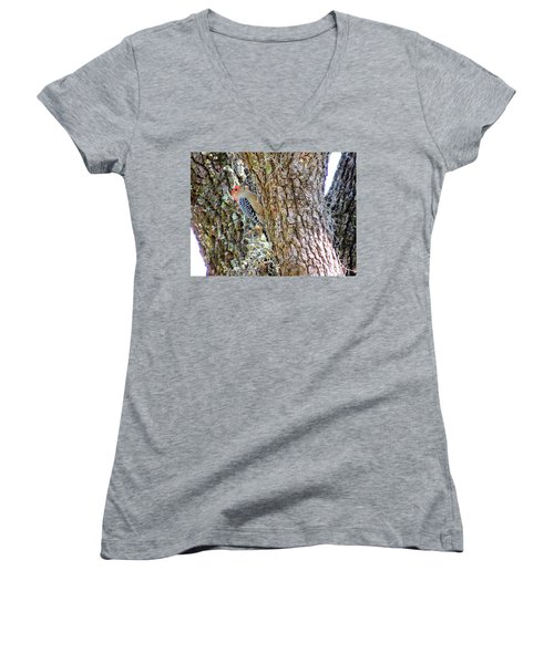 Red-bellied Woodpecker By Bill Holkham Women's V-Neck T-Shirt (Junior Cut) by Bill Holkham