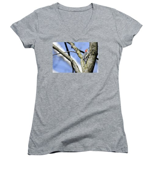 Women's V-Neck T-Shirt (Junior Cut) featuring the photograph Red-bellied Woodpecker by Gary Wightman