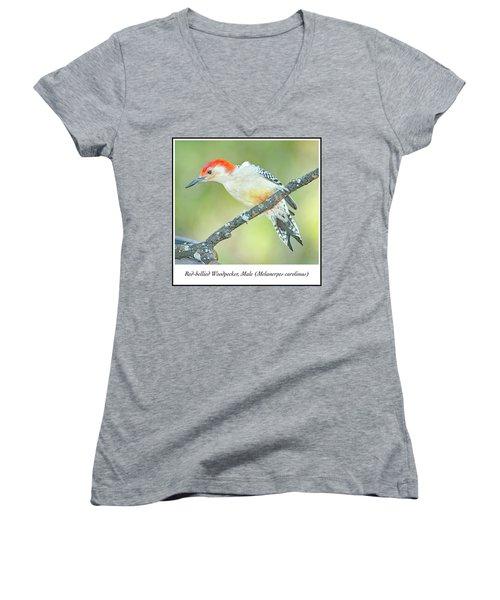 Red Bellied Woodpecker, Male Women's V-Neck T-Shirt (Junior Cut) by A Gurmankin