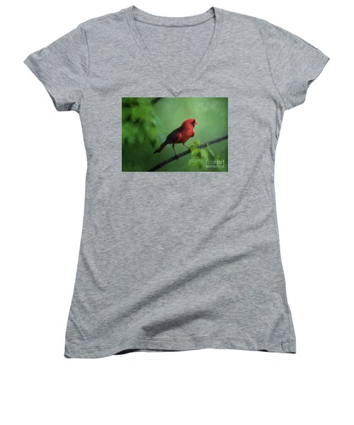 Women's V-Neck T-Shirt featuring the digital art Red Bird On A Hot Day by Lois Bryan