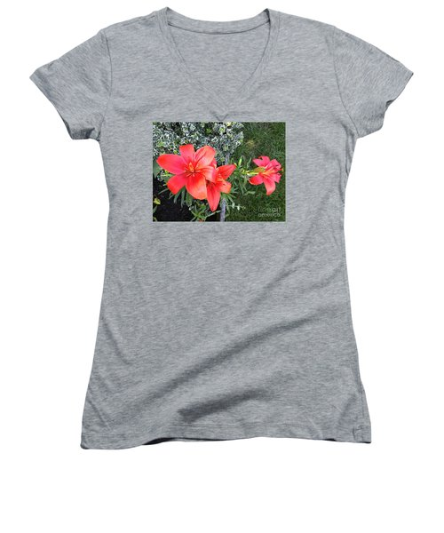 Red Day Lilies Women's V-Neck