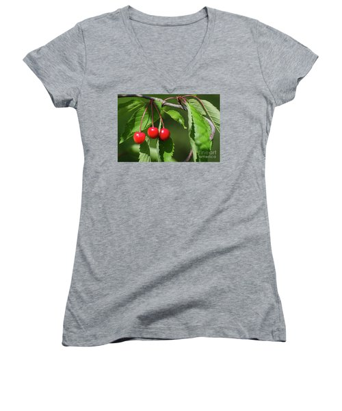Women's V-Neck T-Shirt featuring the photograph Red Delicious by Kennerth and Birgitta Kullman