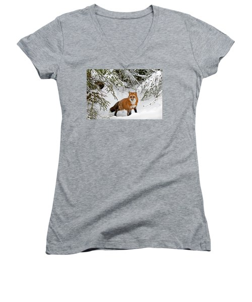 Women's V-Neck featuring the photograph Red Fox In Winter by Scott Read