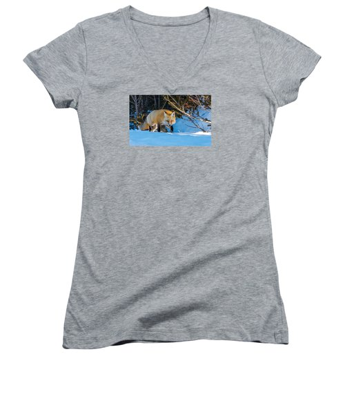 Women's V-Neck T-Shirt (Junior Cut) featuring the photograph Red Fox In Winter Snow by Yeates Photography