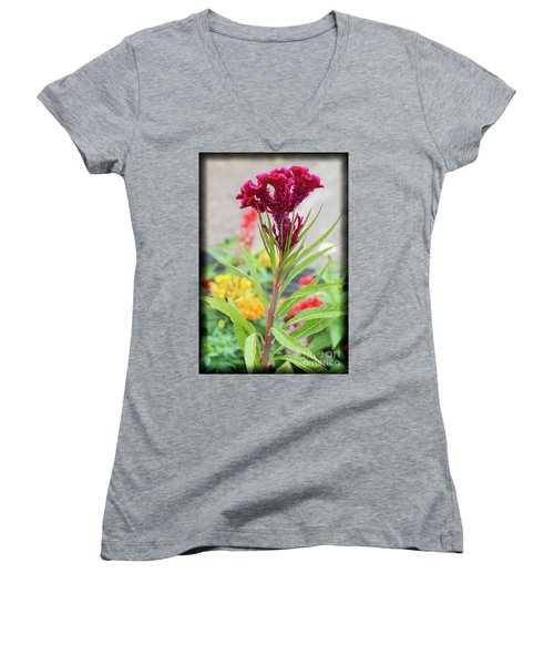 Red Fusion Women's V-Neck T-Shirt