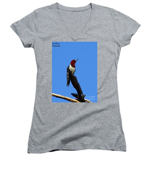 Red Headed Woodpecker On A Snag Women's V-Neck