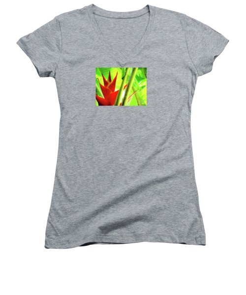 Red Heliconia Women's V-Neck
