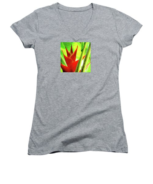 Red Heliconia Plant Women's V-Neck