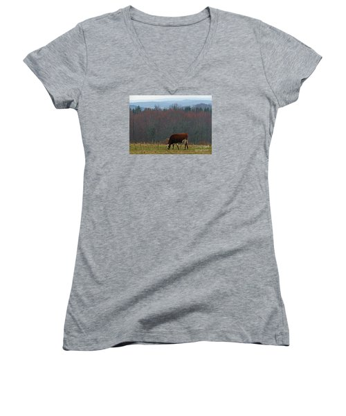 Red Holstein Of The Hills Women's V-Neck T-Shirt (Junior Cut) by Christian Mattison
