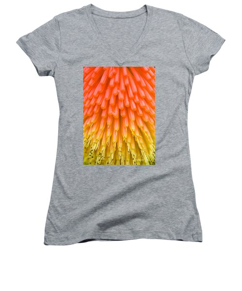 Red Hot Poker Flower Close Up Women's V-Neck T-Shirt (Junior Cut) by Colin Rayner