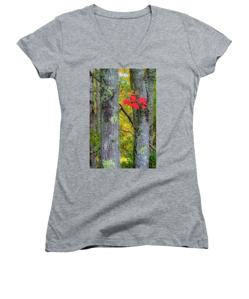 Red Leaves Women's V-Neck (Athletic Fit)