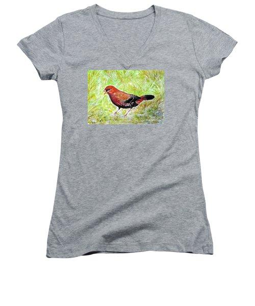 Red Munia Women's V-Neck T-Shirt (Junior Cut) by Jasna Dragun