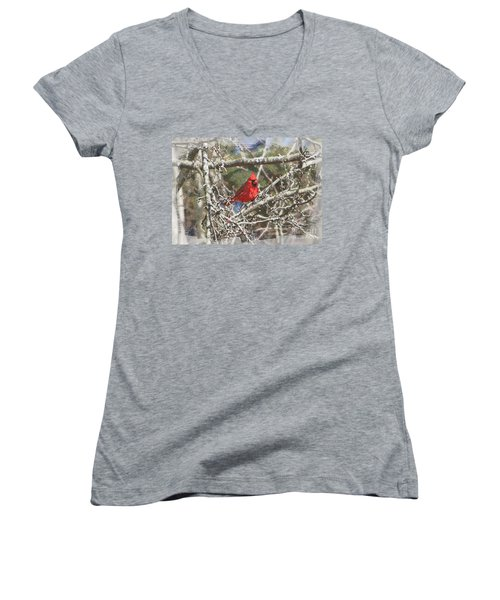 Women's V-Neck T-Shirt (Junior Cut) featuring the photograph Red Neck by Robert Pearson