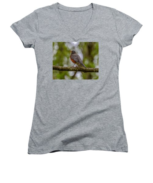 Women's V-Neck T-Shirt (Junior Cut) featuring the photograph Red Robin by Jerry Cahill