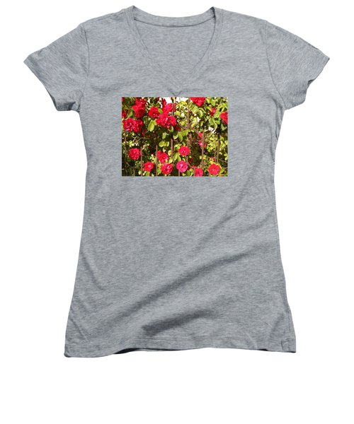 Red Roses In Summertime Women's V-Neck T-Shirt (Junior Cut) by Arletta Cwalina