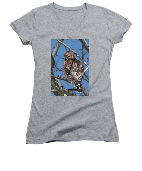 Women's V-Neck T-Shirt (Junior Cut) featuring the photograph Red Shouldered Hawk 2017 by Bill Wakeley