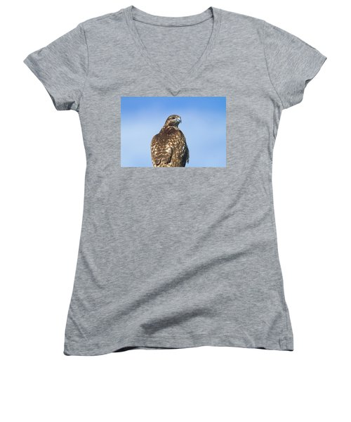 Red-tailed Hawk Perched Looking Back Over Shoulder Women's V-Neck